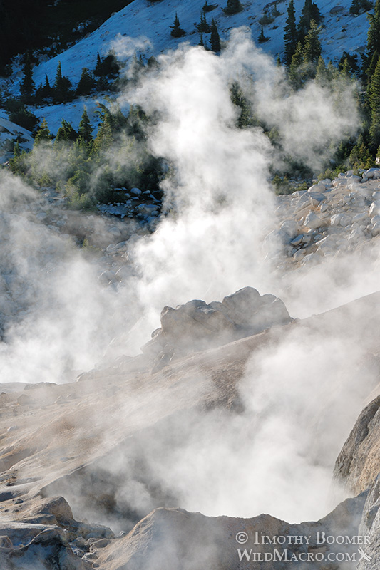 Bumpass Hell, Lassen Volcanic National Park's most impressive hydrothermal area.  Stock Photo ID=SCE0144